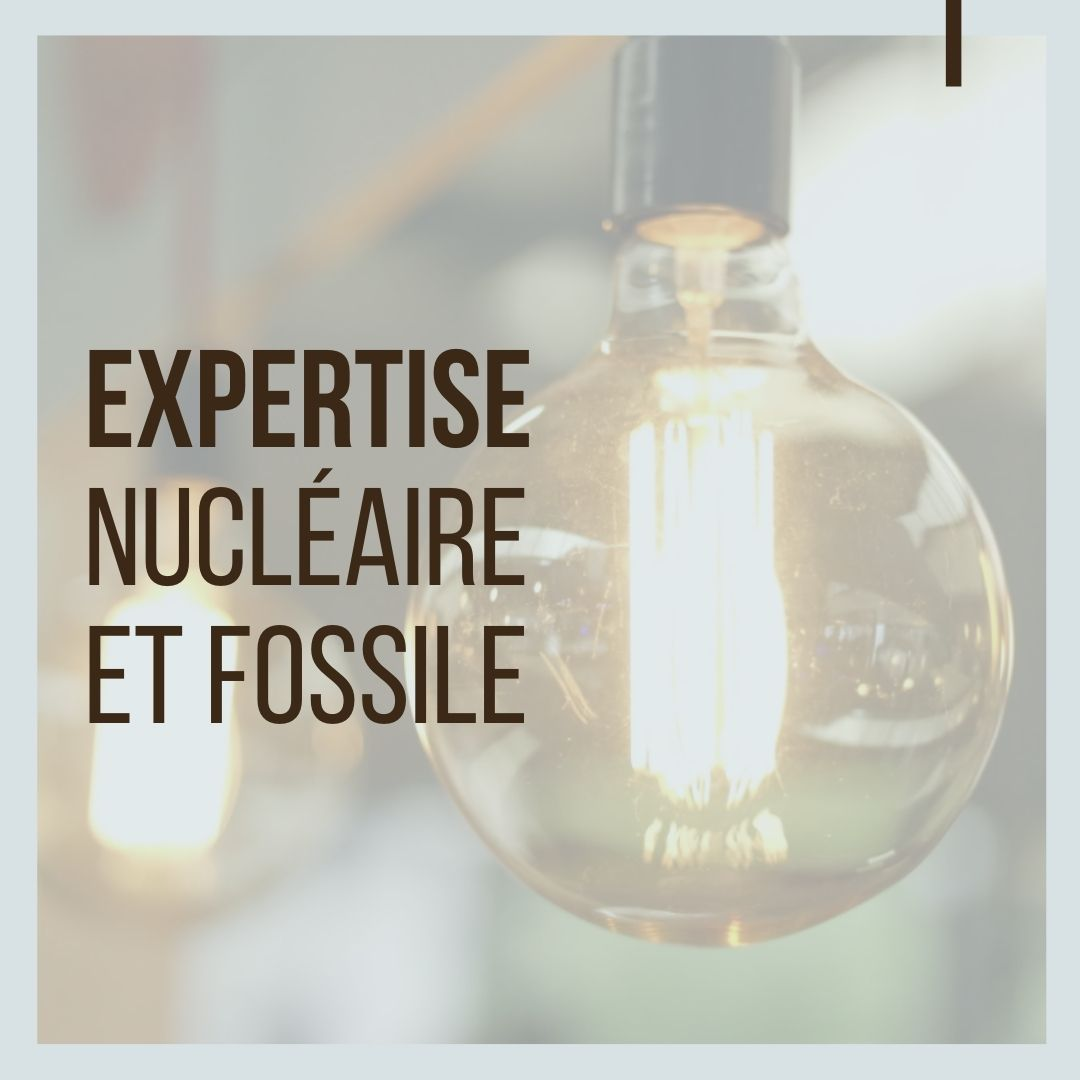 Expertise nucléaire et fossile